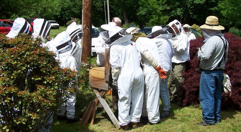 LCBA May 17 Top Bar Hive Inspection Workshop