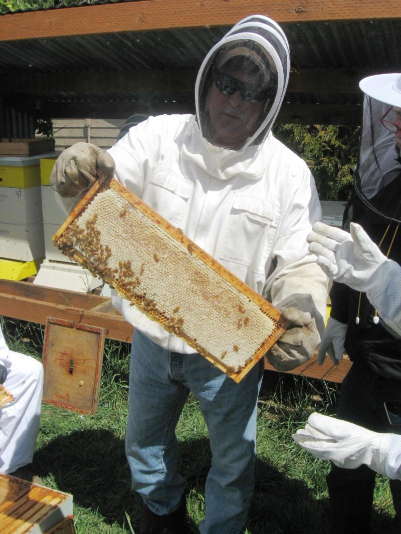 LCBA President Kevin Reichert holds up a sample honey frame at supers workshop