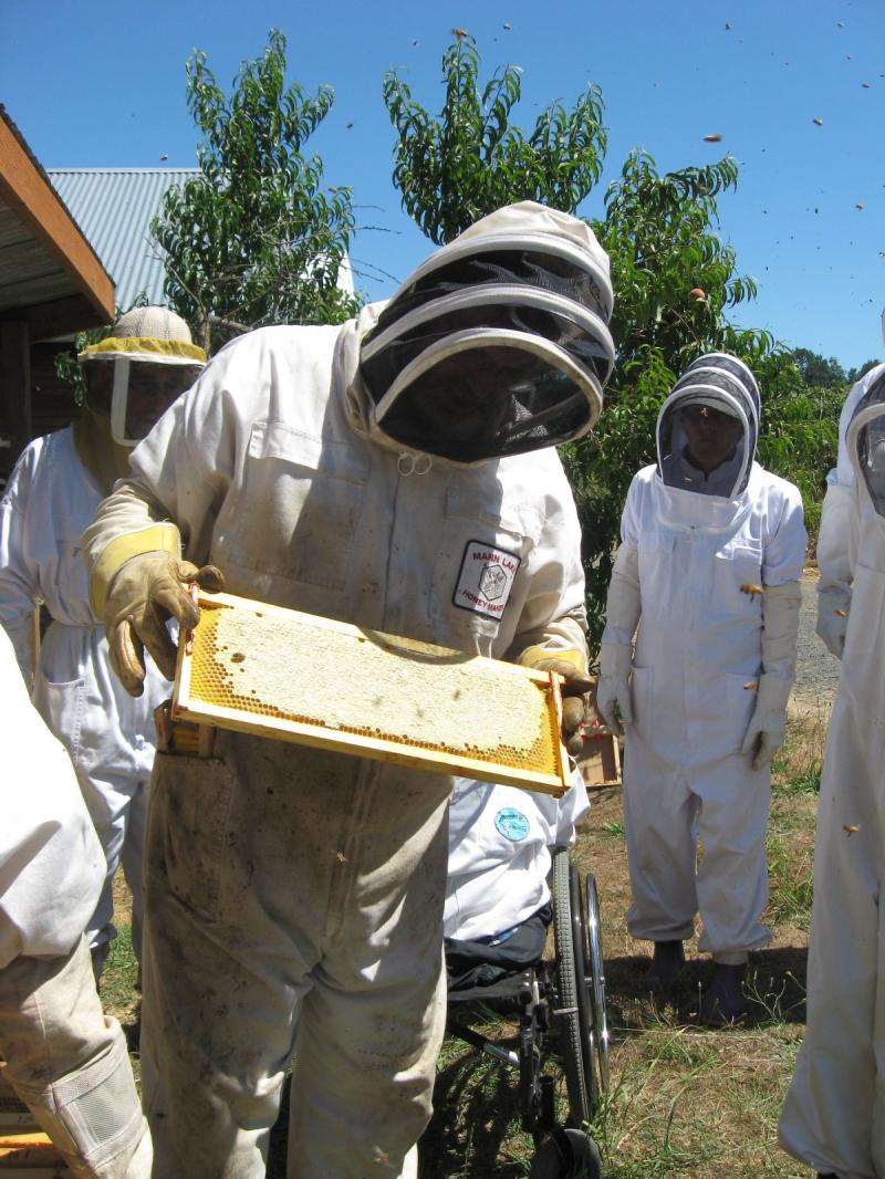 LCBA Community Outreach Coordinator Dan Maughan at July 18 Honey Supers Removal