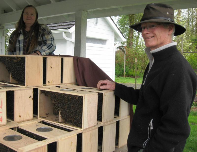 LCBA member William helps with package bee distribution