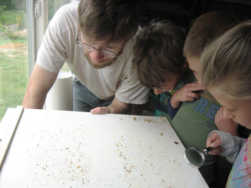 LCBA youth scholar Sam checking sticky board for mites