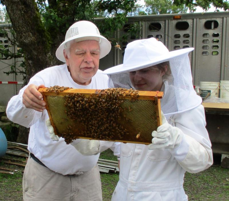LCBA Hive Inspection Workshop mentor Gottfried shows first year beekeeper Kenzie
