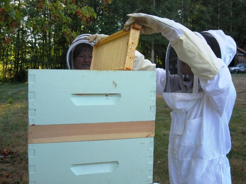 Jana and Janelle removing honey supers