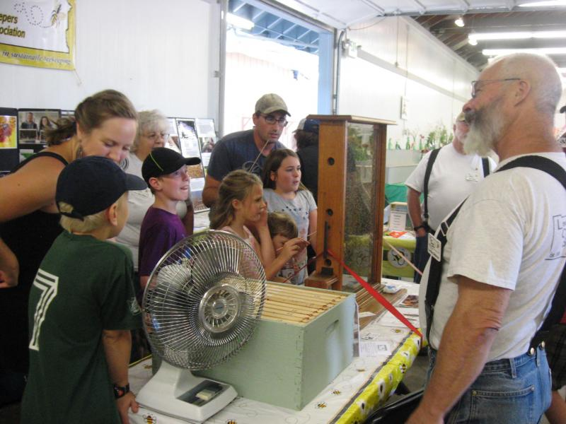 LCBA volunteer Gordon Bellevue with visitors to the observation hive