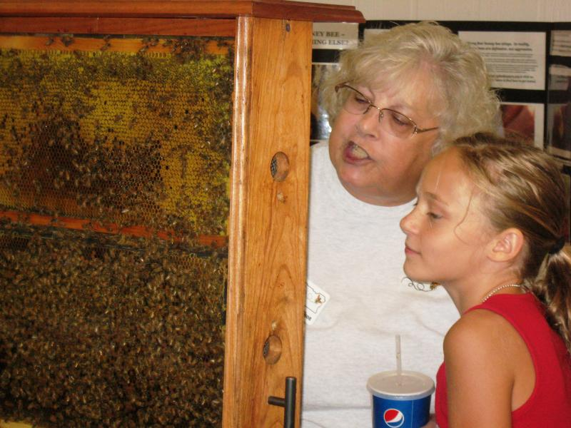 LCBA volunteer Mary Ellen Wilson with a young visitor to the observation hive