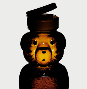 Honey bear - Jamie Cheung