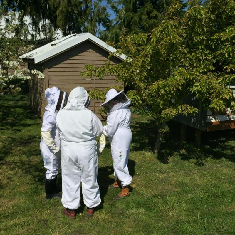 April 11 2015 LCBA Hive Inspection Workshop