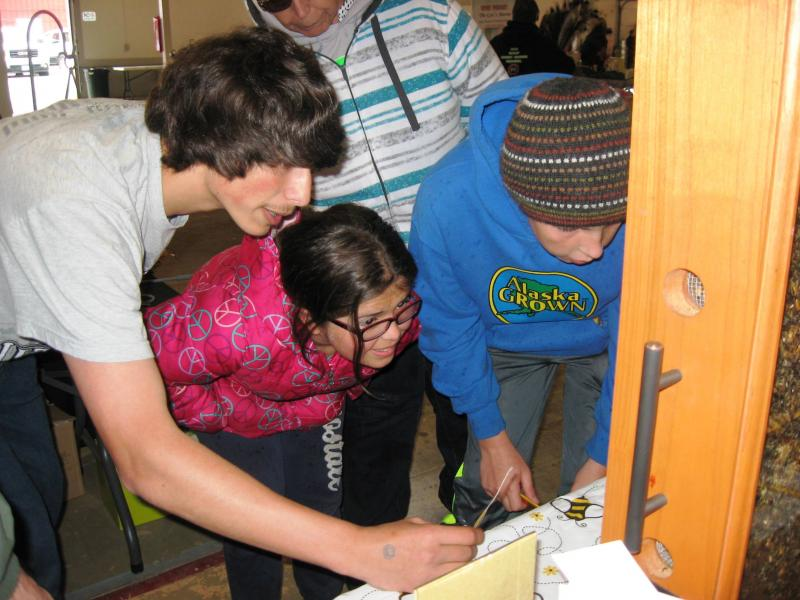 Lewis County Beekeepers - May 2014 Spring Youth Fair
