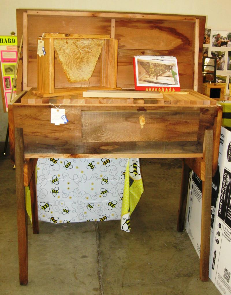 Top Bar Hive & Honey Frame