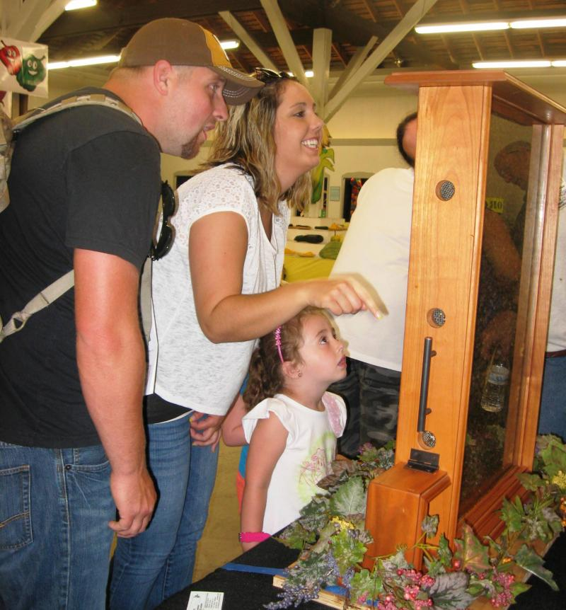 Visitors to LCBA exhibit delighted by observation hive