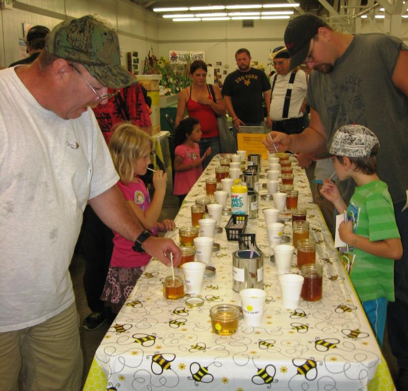 LCBA 2015 Honey Judging Contest at the Fair