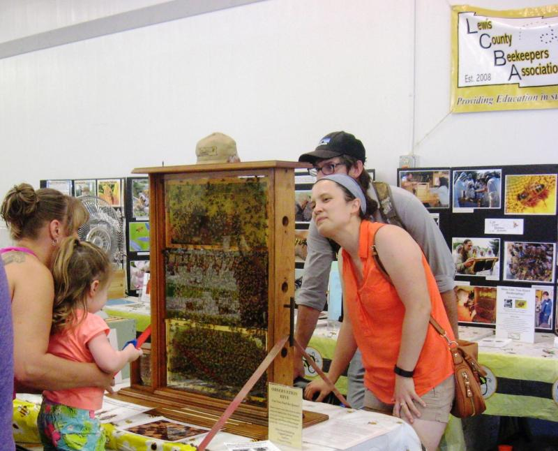 LCBAs Observation Hive at the 2016 Southwest Washington Fair