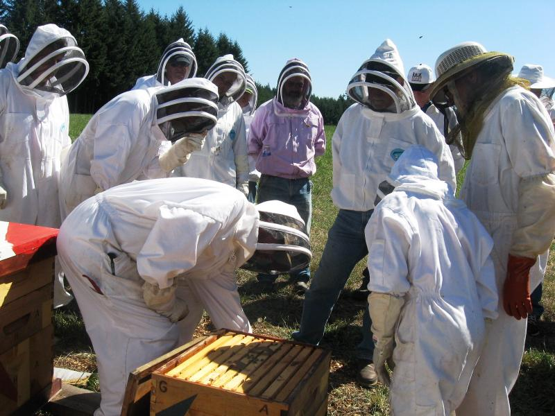 Lewis County Beekeepers Association fall management workshop