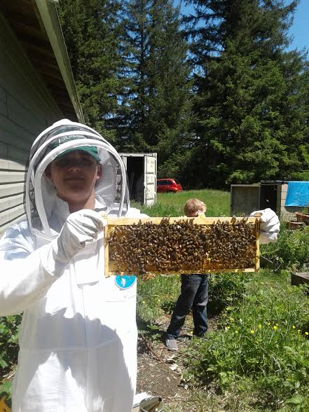 LCBA Youth Scholar Adam holds up a frame of bees