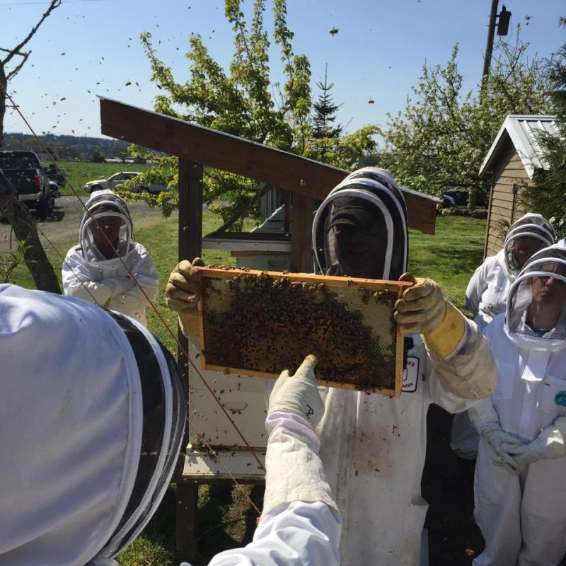 April 18 2015 LCBA Hive Inspection Workshop